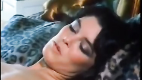 Roko Video Sekas Fantasies 1981