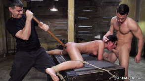 Slave In Stockings Gangbang Copulated
